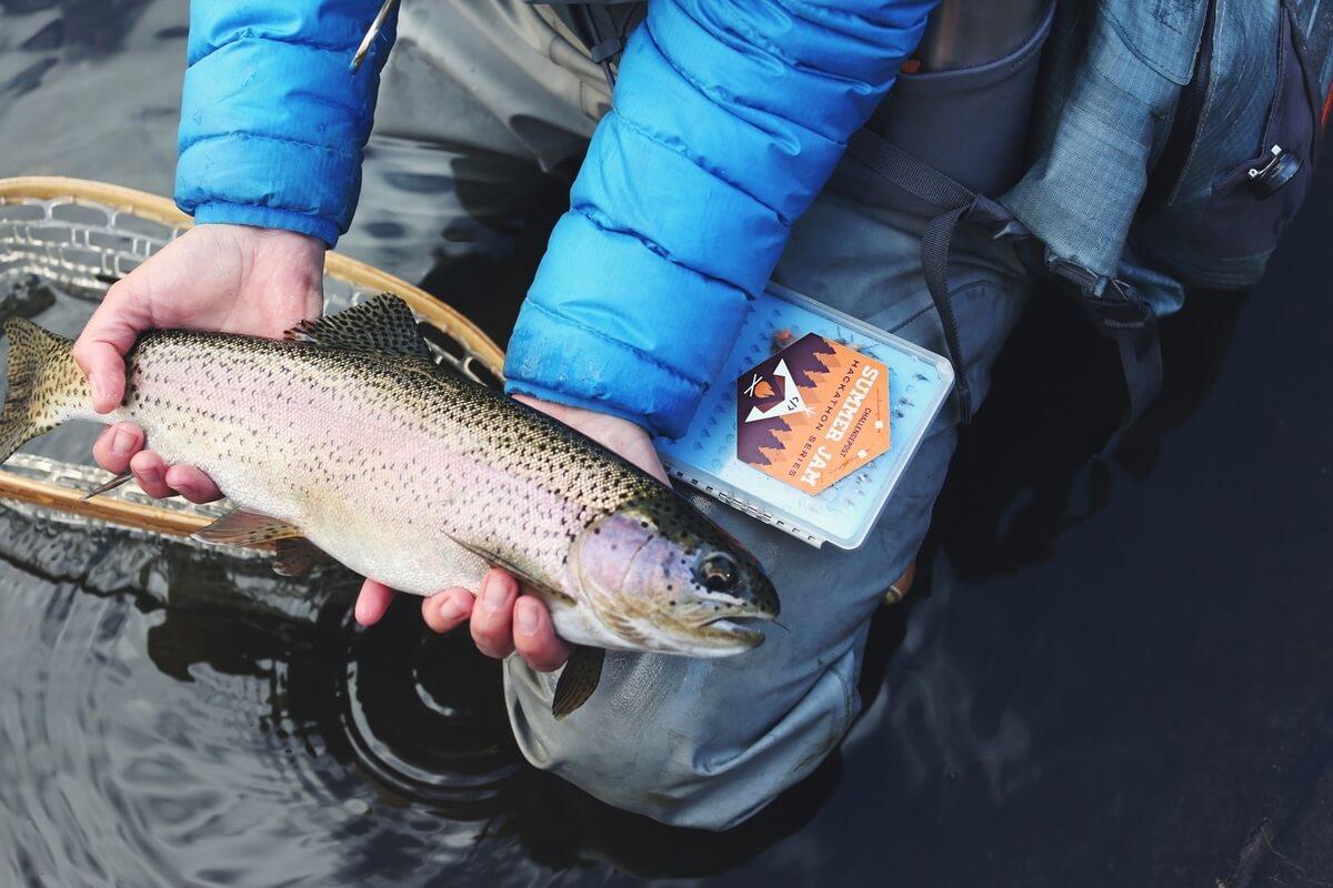 La pêche au printemps dans le domaine de Nizhniy Novrogod de vidéo